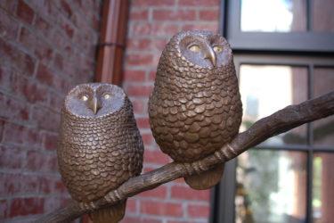 Jim Sardonis - Baby Owls