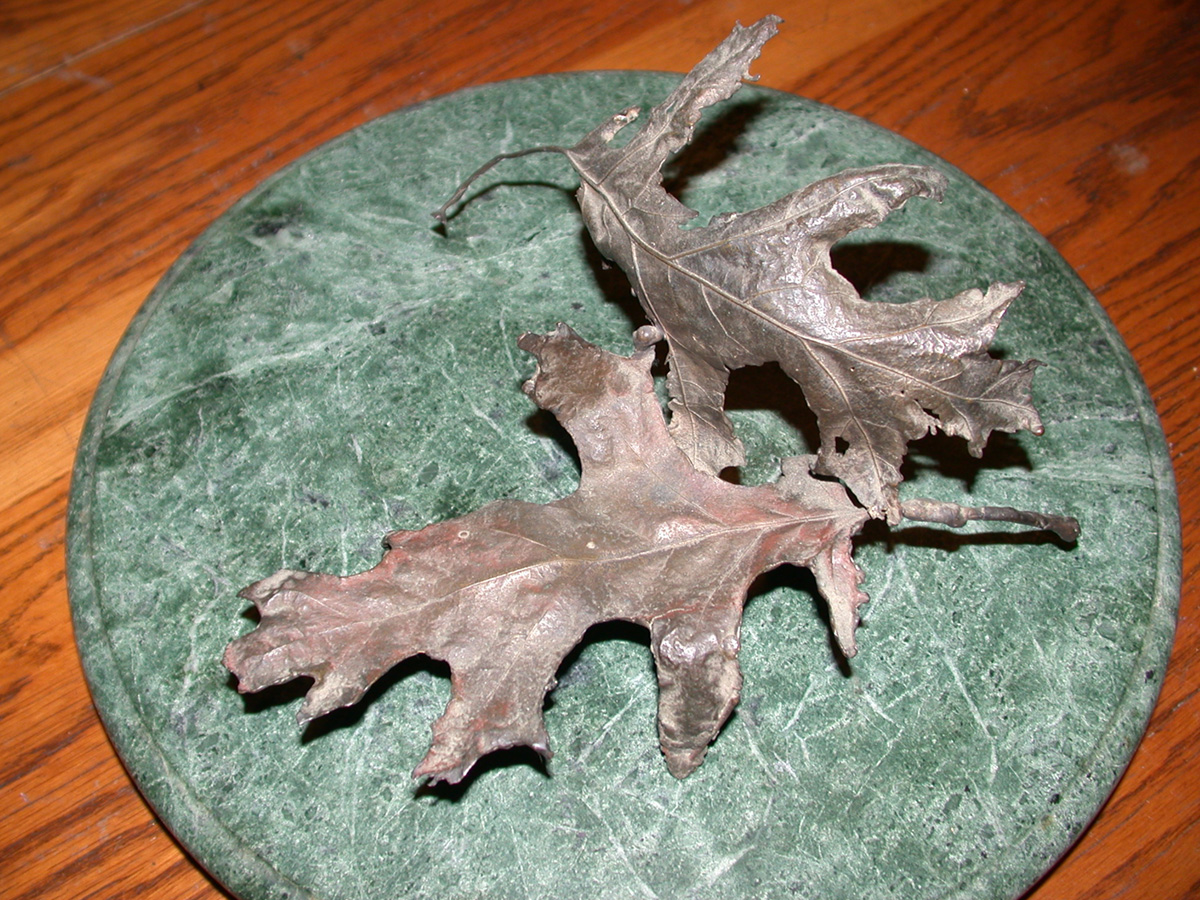 Jim Sardonis - Leaf Sculpture