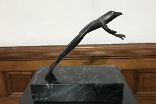 Jim Sardonis - Leaping Frog